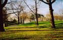 Franz Sigel Park